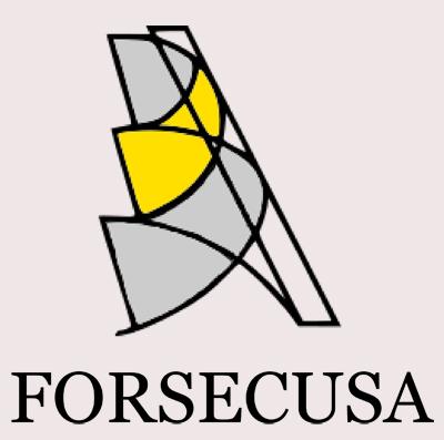 Logo Forsecusa Definitivo-crop2